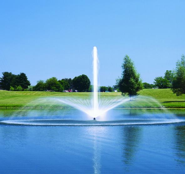 Medium Sized Aeration Fountain - Daffodil